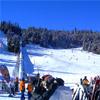 Gone Skiing