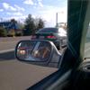 Car Ride