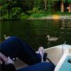 Lake Shoecraft